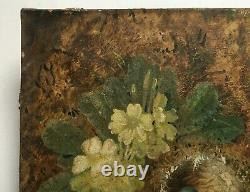 Ancient Painting Signed, Oil On Canvas, Nest, Eggs, 19th Century