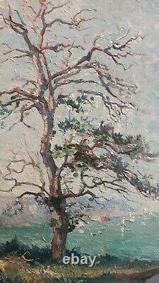 Ancienne huile sur bois, arbre, paysage, bord de mer