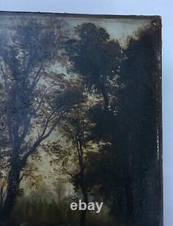 Tableau ancien, Barbizon, Huile sur toile, Paysage de sous-bois, Arbres, XIXe