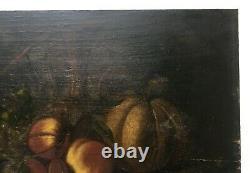 Tableau ancien, Huile sur panneau, Nature morte, Fruits et carafe, Fin XIXe