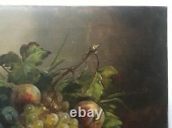 Tableau ancien signé, Huile sur toile, Nature morte aux fruits, Début XXe